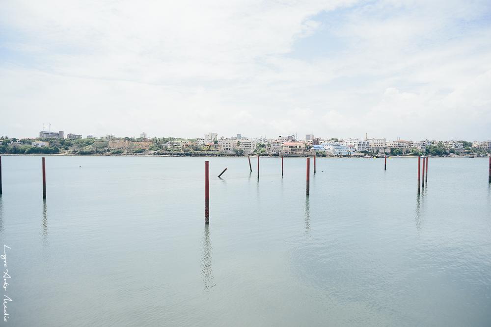 english-point-marina-lyra-aoko-6